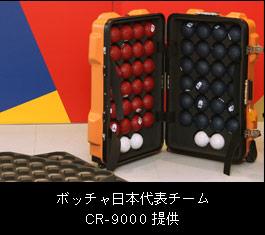 ボッチャ日本代表チーム
